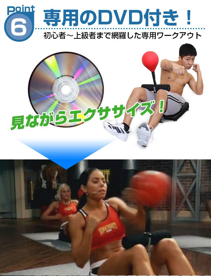 専用DVD付属